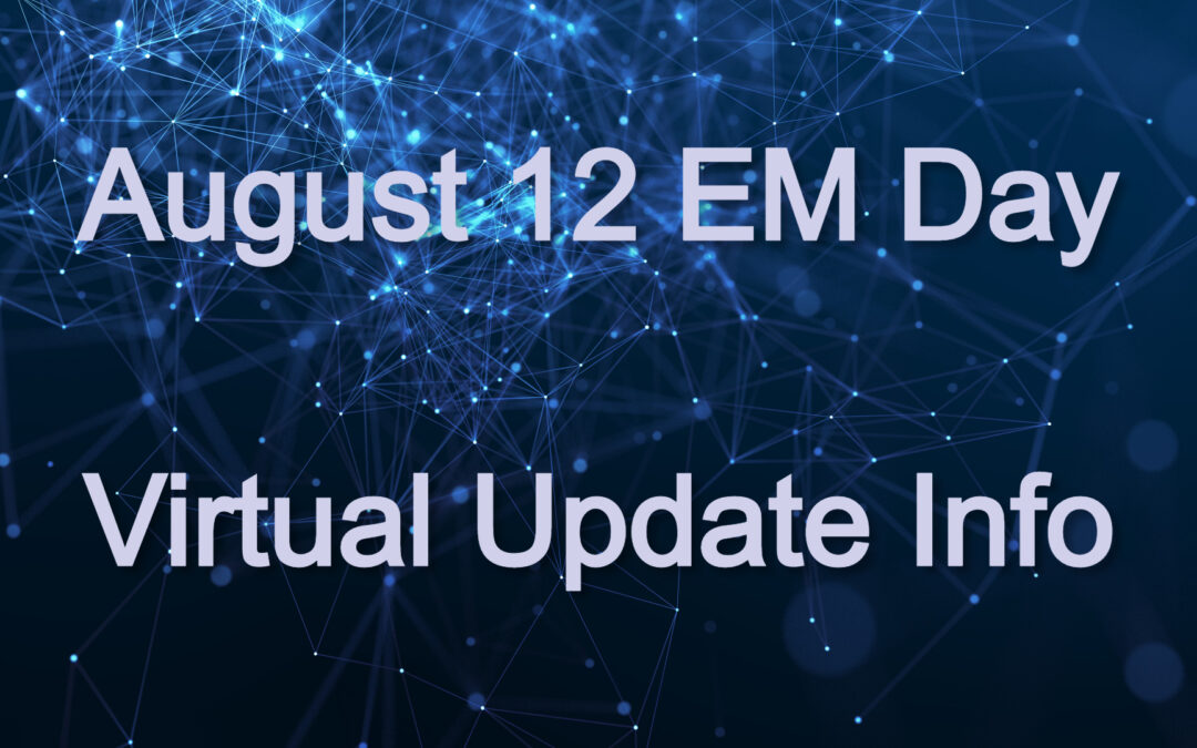 2020 Virtual EM Workshop